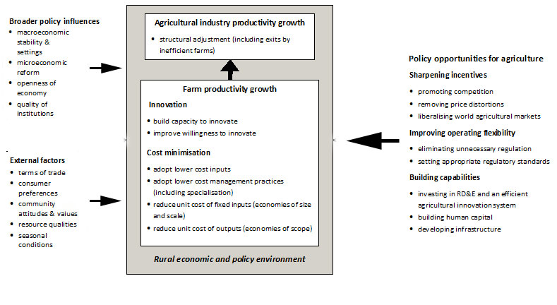 ABARES framework of agricultural productivity determinants